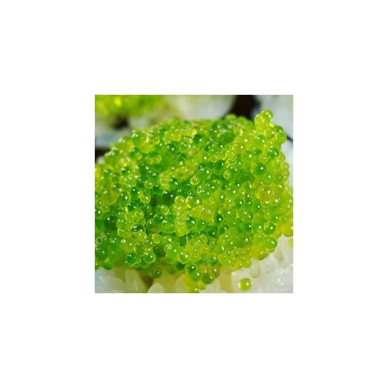 Masago Huevas de capelán wasabi 1Kg